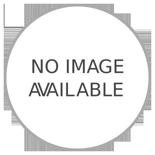 Scania Trailer Control Valve